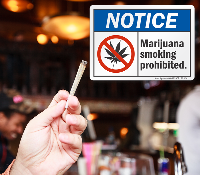 smoking-marijuana-1